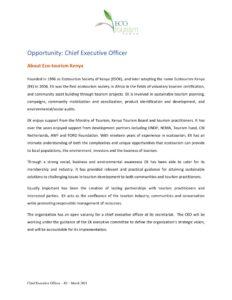 thumbnail of April 2021 – Job Description EK Chief Executive Officer V2